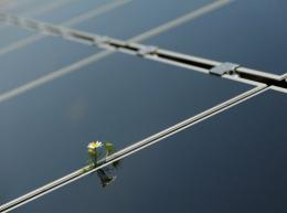 China is the world's biggest solar panel maker and the bulk of its $35.8 bn of solar exports last year went to the EU