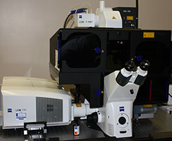 Fluorescence SIM available at EMSL: A powerful instrument to study molecular cell biology, including synthetic biology