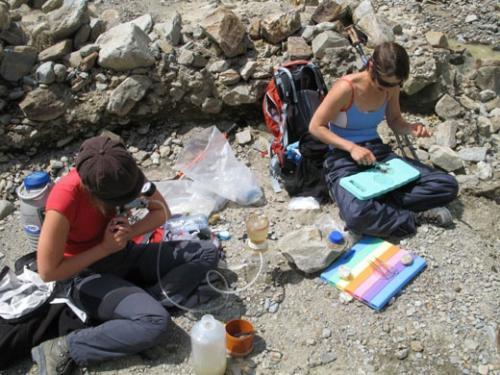 Glacial organic matter and carbon cycling
