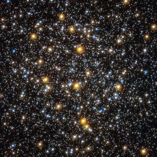 Hubble Sees an Unexpected Population of Young-Looking Stars