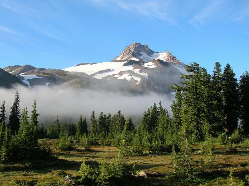 Mountain meadows dwindling in the Pacific Northwest