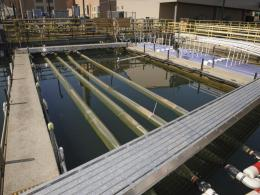 NASA showcases method to grow algae-based biofuels