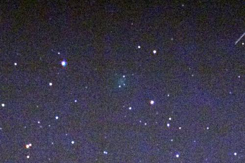 New comet discovered by amateur astronomer