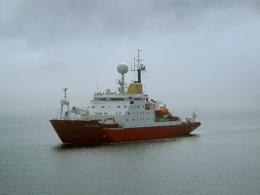 New study provides insight into Southern Ocean food web