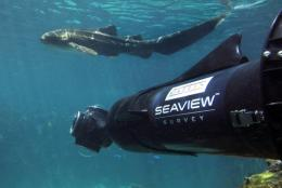 Panoramic images of Great Barrier Reef will take millions on virtual dives