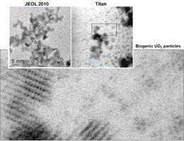 Scientists uncover an unknown actor?s role using ARRA-funded imaging tools