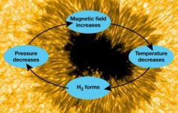Study finds 'cool' gas may form and strengthen sunspots
