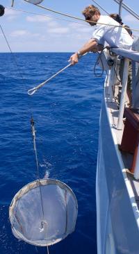 Wind pushes plastics deeper into oceans, driving trash estimates up