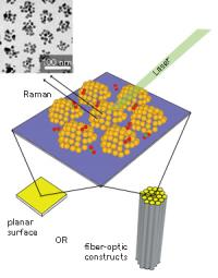 Nanoparticles: Making gold economical for sensing