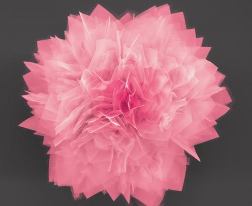 Ученые создали «наноцветы» для устройств хранения энергии и солнечных батарей