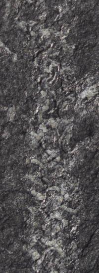 Prehistoric builders reveal trade secrets