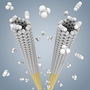 Scientists 'clone' carbon nanotubes to unlock their potential