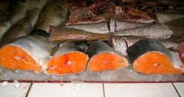 Seafood, wild or farmed? The answer may be both