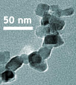 Reference material could aid nanomaterial toxicity research
