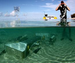 MBARI researchers help design first field experiment to test the effects of ocean acidification on coral reefs