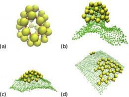 New insights into membrane-assisted self-assembly