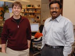 Iowa State researchers developing 'BIGDATA' toolbox to help genome researchers