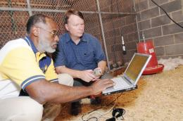 Bird vocalization research could improve poultry production, lower costs
