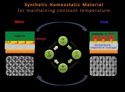 Smart materials get SMARTer