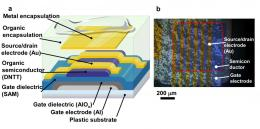 The world's first sterilizable flexible organic transistor