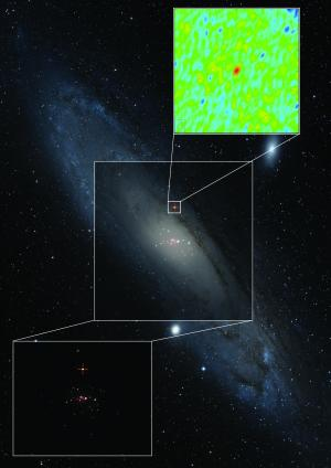 Astronomers discover 'missing link' of black holes