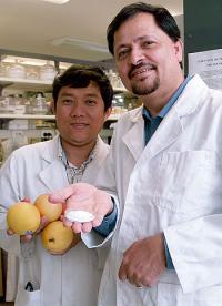 Новая технология для управления созреванием плодов