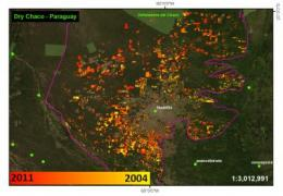 Scientists develop first satellite deforestation tracker for whole of Latin America