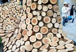 A 15-metre-long display made of about 2,000 cedar slices
