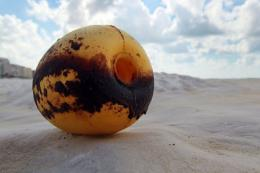 A buoy that washed ashore is seen stained with oil residue from the Deepwater Horizon oil spill in 2010