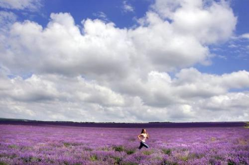 A girl jogs through a lavender field