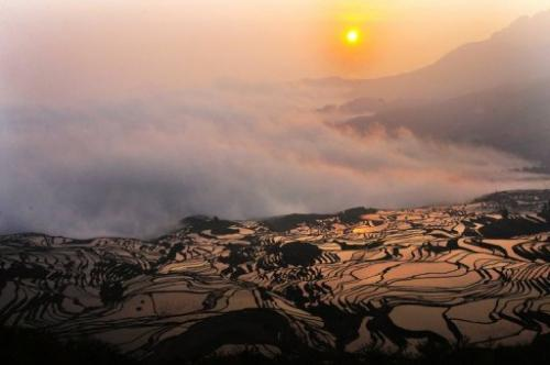 A hillslope of paddy fields in the mountainous region of Yuanyang, southwest China's Yunnan province.