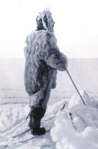 A legacy of the race to the south pole: New scientific discoveries in antarctica