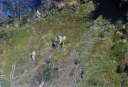 Alpine Fault study shows new evidence for regular magnitude 8 earthquakes