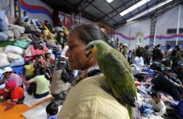An Amazonic indigenous native woman carryies a parrot on her shoulder