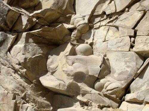 العثور على بيض ديناصورات في الشيشان عمره 60 مليون سنة