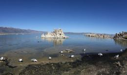 Bacterium found in arsenic-rich Mono Lake was said to redefine the building blocks of life