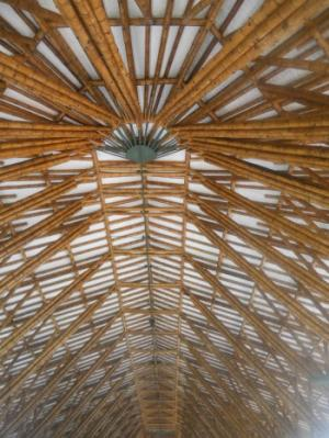 Bamboo: The new super construction material