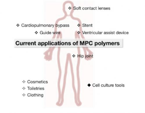 Biopolymer: Designer interfaces between biological and artificial systems