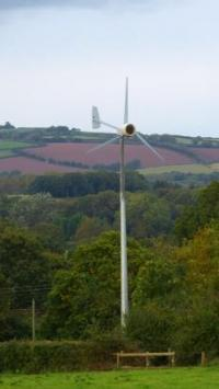 Call for national guidelines to protect birds and bats from turbines
