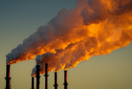 Carbon scheme in danger of going up in smoke