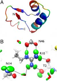 Small is beautiful: Viewing hydrogen atoms with neutron protein crystallography