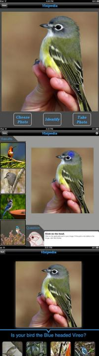 Computer scientists develop an interactive field guide app for birders