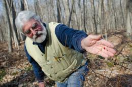 Controlling Japanese barberry helps stop spread of tick-borne diseases