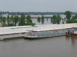Effects of flooding on Cairo, Ill.