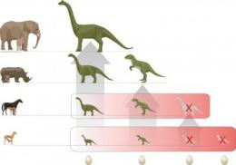 Egg-laying beginning of the end for dinosaurs