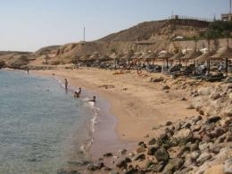 Egypt's Sharm el-Sheikh recorded shark attacks in 2010