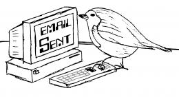 Are you cuckoo? What your emailing style says about you