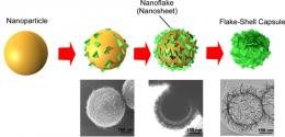 "Fabrication of new elastic ""soft capsule"" using nano-sized flakes"
