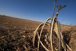 Farmers in Aragon will lose around 1.3 billion euros ($1.7 billion) this season due to the lack of rain