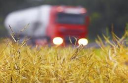 Food vs. fuel: Is there surplus land for bioenergy?